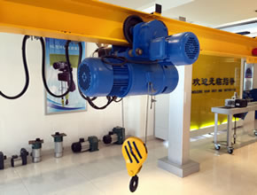 Single Speed Wire Rope Electric Hoist